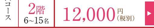 乗合コース2階6~15名お一人様:12,000円(税別)